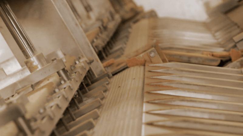 Macchina sceglifette ideata e prodotta per Buitoni